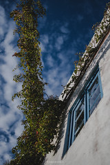 Blue Window (Joao Dordio) Tags: faded sintra lisbon country landscape rusty