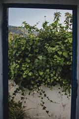 Blue Frame (Joao Dordio) Tags: faded sintra lisbon country landscape rusty