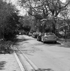 DSC_0585 (shon.moore) Tags: miami ocho calle