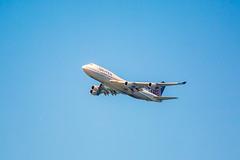 Big Old Jet Airliner (Thomas Hawk) Tags: america bayarea california marinadistrict sfbayarea sanfrancisco usa united unitedairlines unitedstates unitedstatesofamerica westcoast airplane jet