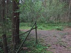 Fence corner- Hovskogen (mtbboy1993) Tags: sonycameraapp fence hovskogen askim indreøstfold forest skog singletrack sti tursti trail foresttrail skogsti norge norway rawtherapee