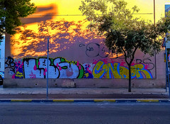 Street Art (Noone Studio) Tags: art street streetart city sunlight shadows leaves tree afternoon travels