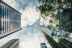(Lisa deJong) Tags: nikon d7100 toronto ontario canada summer august 2019 architecture building