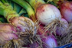 At the market (Leaning Ladder) Tags: bari italy italia puglia apulia onions produce market colors canon 7d mkii 7dmkii leaningladder