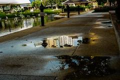 Reflection of water on the pavement (Thanathip Moolvong) Tags: reflection wet water pavement nikon fe 50mm f14 ais kodak plus 200 negative film bangkok thailand