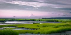 Low Tide (sgordon427) Tags: beach bay cape cod massachusetts grass brush green grey purple nikon 35mm sky sunset clouds