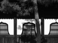 Bell Windows in Sunset (Nick Condon) Tags: architecture blackandwhite japan kyoto olympus45mm olympusem10 shadow temple tree wall window