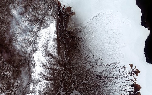 Lena River Delta - Landsat