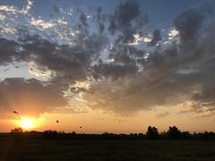 Oklahoma Sunrise. (Lisa Roeder) Tags:
