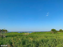 August2019_7512 (cmiked) Tags: 2019 august lacypoint lakewaco texas waco woodway unitedstatesofamerica