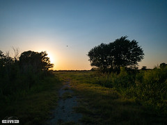 August2019_88 (cmiked) Tags: 2019 august lacypoint lakewaco texas waco