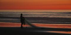 night fishing 2 (Audvis) Tags: alisitos colores colors méxico playa beach siluetas silhouettes sea mar pesca fishing travel viajes