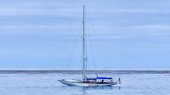 P1420485-Edit (craigchaddock) Tags: cabrillonationalmonument california fz300 sandiego explore explored nik analogefexpro2 lightroom 10myacht branta sailboat yacht dts4