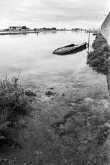 ... Punta Sabioni ... (Norbert H.) Tags: 35mm schwarzweis analog tmax400 kodaktmax400 canoneos3 puntasabioni