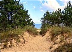 To the Beach   Zum Strand [explored] (André-DD) Tags: ostsee balticsea ocean ozean wasser water mecklenburgvorpommern mecklenburgwestpomerania mecklenburgwesternpomerania sand wolken clouds baum bäume sommer summer sonne sun beach