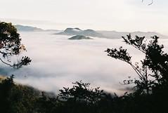 horton plains (dancearoundaworldburningdown) Tags: 35mm film olympusmjuii