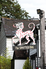 The Spotted Dog pub sign Penshurst Kent UK (davidseall) Tags: the spotted dog pub pubs sign signs inn tavern bar public house houses penshurst kent uk gb british english hanging