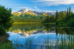 Calm (Chad Dutson) Tags: alaska calm chad dutson evening forest glow grass lake landscape light mountain mountains nature northwest pacific pine reflection sunset tree trees water waterscape wild wilderness