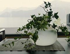 Marshlu, Mascha. LU 084 (12) (butts97) Tags: haiku urban modern stilllife luzern minimal vase arrangement casual