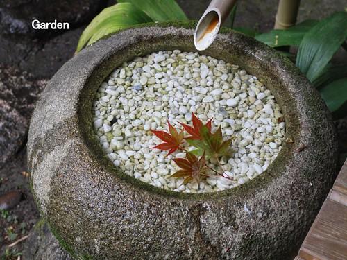 garden2_2500x1873