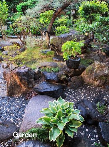 garden4_2500x1873
