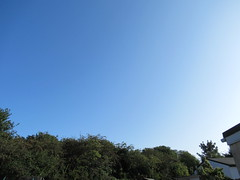 Tuesday, 20th, Sunny morning IMG_6613 (tomylees) Tags: kent morning summer august 2019 20th tuesday weather sky blue