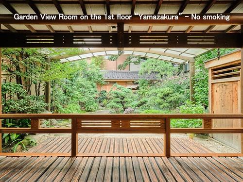 yamazakura8_2500x1873