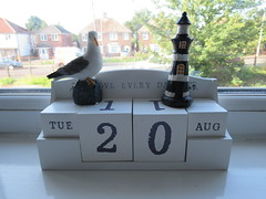Tuesday, 20th, A day at the seaside IMG_6612 (tomylees) Tags: lighthouse seagull calendar perpetual kent morning summer august 2019 20th tuesday