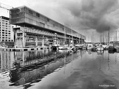 Kraanspoor 18-8-19 (k.stoof) Tags: kraanspoor amsterdam noord marina amsterdamnoord