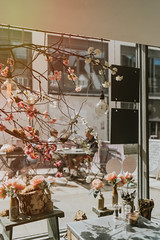 Through the window ..... (christilou1) Tags: sony a7riii fe35 14 za window shop food snacks guildford surrey england