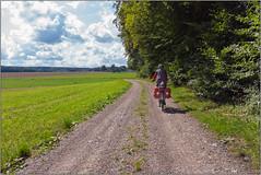 Unterwegs (Janos Kertesz) Tags: green tree nature field countryside rural grass landscape road blue cloud sunny sky heaven travel bavaria bayern