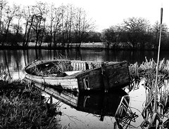 abandoned boat redux (amazingstoker) Tags: canal dogmersfield basingstoke reeds rowing abandoned lake reflection pond boat tundry derelict decay