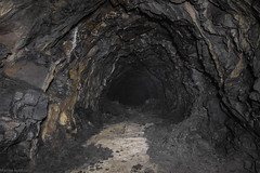 """Kill the Rhino"" (The Urban Tourist) Tags: urbex urbanexploration urbexitalia abandoned abandonedplaces abandonedairraidshelter airraidshelter cave"
