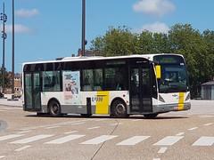 BEL Lijn 4255 ● Brugge (Roderik-D) Tags: vanhool 4255 brugge newa308 midibus busstationtzand hwm384 stadsbus stadtbus citybus delijn42444277