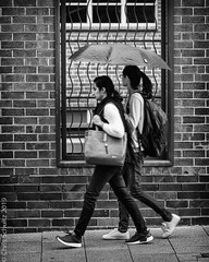 Umbrella for two (Chris (a.k.a. MoiVous)) Tags: streetlife citywestprecinct adelaidecbd street