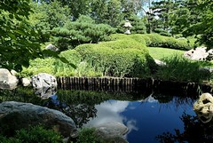 Japanese Garden (shelly.morgan50) Tags: shellymorgan50 panasoniclumixdczs200 japanesegarden trees pond reflections sunlight sunshine greenery nature rocks usa midwest garden landscape scenery