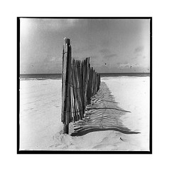 berck plage (michel lebedel) Tags: noirblanc argentique analogique hasselblad berck 6x6 120 blackwhite square sea sun beach