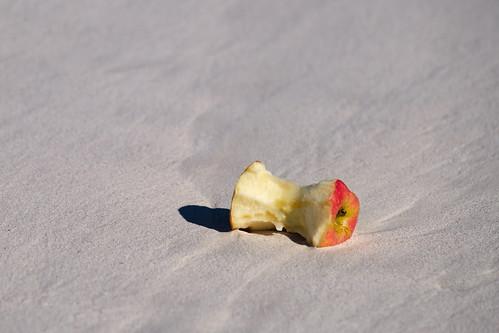 Apple Core on Beach Sand