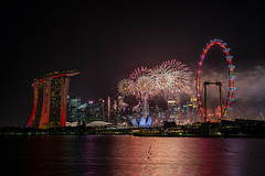 Red Singapore (Narr820) Tags: singapore asia nationalday night black red hotel marina bay wheel ferries art science museum city skyline firework water long sands view building architecture state flyer exposure color smoke sky bridge waterfront celebration outdoors show