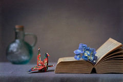 Still life with hydrangea and book (Chapter2 Studio) Tags: hydrangea old book vintage bottle handmade origami crane still life quiet peaceful innerpeace red textured sony