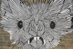 Art Wall Houston (Mabry Campbell) Tags: 6thward artwallhou harriscounty houston sixthward texas usa colorful image painting photo photograph wall wallart f63 mabrycampbell june 2019 june42019 20190604houstoncampbellh6a9391 24mm ¹⁄₄₀₀sec 100 tse24mmf35lii