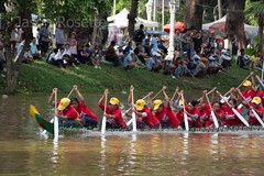Medium view red women's boat racing team paddles during time trials in Cambodia (jasonrosette) Tags: asia camerado jrosette jasonrosette cambodia travel paddle boatrace women redteam athlete rower sportingevent row crew detination
