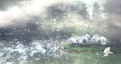 FroliXXX Photo Contest - Mystical Moment (Karole Batista) Tags: frolixxx photocontest landscape mystical forest tents exploresecondlife secondlife digitalphotography sl slartwork karolebatista