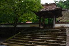 20190820a7r3_9787 (Gansan00) Tags: ilce7rm3 α7rⅲ sony japan 日本 snaps ブラリ旅 landscape rain 8月 津和野 島根県 fe35f28 zeiss
