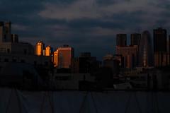 夜明けの染み方 (Yorozuna Yūri / 萬名 游鯏(ヨロズナ)) Tags: 夜明け 薄明 日の出 朝焼け 朝陽 朝日 日光 光 夜明け前 breakingdawn daybreak dawn twilight twilightzone twilightsky sunrise 反射 reflection ビル群 ビル 高層ビル群 超高層ビル 高層ビル skyscraper view viewspot 見晴らし 眺め 眺望 展望 高台 若松河田 新宿 新宿区 新宿副都心 副都心 都心 都市部 都心部 首都圏 都会 wakamatsukawada shinjuku shinjukuward 東京都 tokyo japan pentaxautotakumar55mmf18 takumar oldlens fujifilm xm1 xシリーズ 東京都庁ビル 都庁ビル 都庁 都庁舎 コクーンタワー