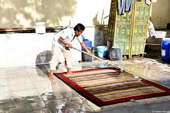 Manufacture de tapis (P-ZiB) Tags: tapis eau jaipur rajasthan inde