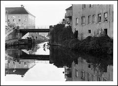 Port sur Saône, reflets (cdut70) Tags: hautesaône paysage bw noiretblanc relfets refletssurleau pelliculehp5 photoargentique franchecomté nikon50mm 50mmf18 pelliculenoiretblanc nikonf80 filmbw ilfordid11 portsursaône réflectionssurleau outside landscape nikkor ilford water river reflections 50mm street filmphotography shadows light rivière lasaône