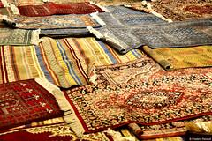 Tapis (P-ZiB) Tags: tapis jaipur rajasthan inde