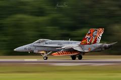 F18_ALA_15-01_NTM2019 copia (hbua) Tags: ntm2019 nato tiger meet france airforce otan aircraft reactor raptor caza f18 spain ala15