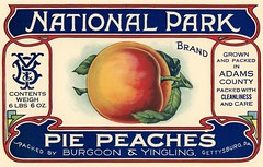 National Park Pie Peaches Label, Gettysburg, Pa. (Alan Mays) Tags: ephemera labels crateboxlabels cratelabels fruitboxlabels boxlabels paper printed nationalparkpiepeaches nationalpark nationalparkbrand brands peaches piepeaches fruits burgoon yingling burgoonyingling yb monograms initials borders red orange blue green gettysburg pa adamscounty pennsylvania antique old vintage typefaces type typography fonts illustrations